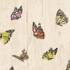 3D Single 2060 Genç Odası Duvar Kağıdı Kelebek Desenli