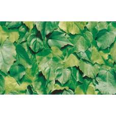 Alkor 380-0022 Yeşil Yaprak Desen Dekoratif Yapışkanlı Folyo