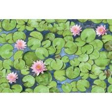 Alkor 380-0033 Yeşil Yaprak Desen Yapışkanlı Folyo