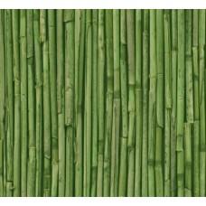 Alkor 280-3177 Yeşil Bambu Desen Yapışkanlı Folyo