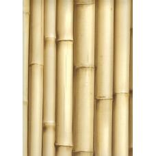 Bluff J223-17 Bambu Görünümlü İthal Duvar Kağıdı