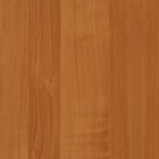 d-c-fix 200-2904 Fındık Ağaç Desenli Folyo