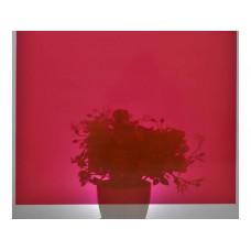 d-c-fix 200-1964 Kırmızı Transparan Yapışkanlı Cam Folyo