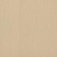 Dekor Life 880-A Vinil Düz Renk Duvar Kağıdı
