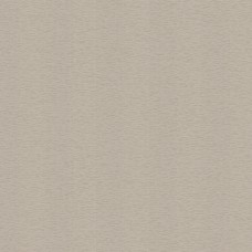Design Plus 13121-3 Vizon Çizgili Duvar Kağıdı