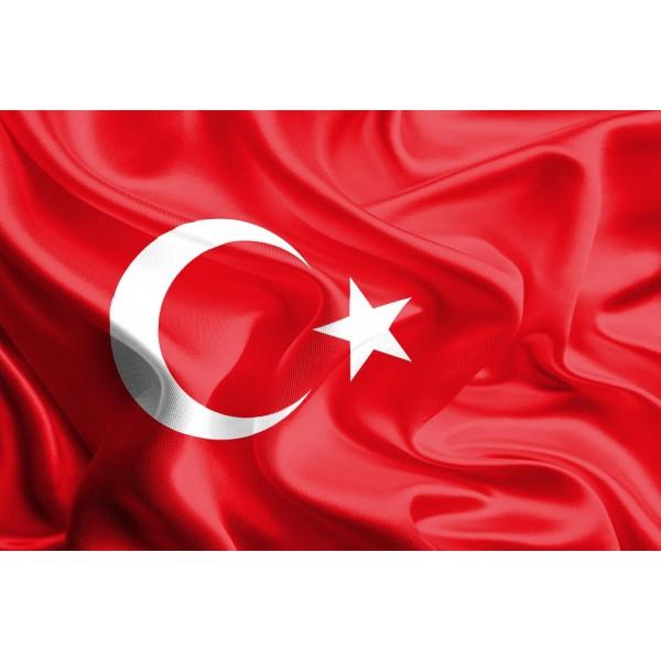 DLDP-020 Türk Bayrağı Duvar Posteri