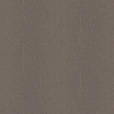 Steampunk G45178 Non Woven Deri Desenli Duvar Kağıdı
