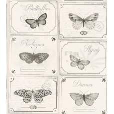 Tiles & More XIV 306514 İthal Kelebek Desenli Duvar Kağıdı