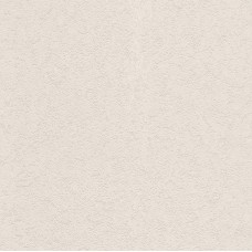 Tiles & More XIV 816228 Sıva Desenli İthal Duvar Kağıdı