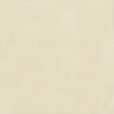 Ugepa Home AB000147 İthal Düz Renkli Duvar Kağıdı