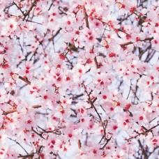 Alkor 280-0062 Romantik Çiçek Desen Yapışkanlı Folyo
