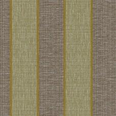 Harmony 161-B Çizgi Desenli Duvar Kağıdı