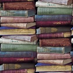 New Art 1044-A Kitap Görünümlü Duvar Kağıdı