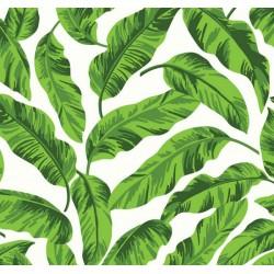 New Selection 338-1 Tropikal Yaprak Desenli Duvar Kağıdı