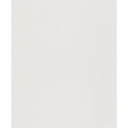 Rasch Wallton 124415 Boyanabilir Duvar Kağıdı